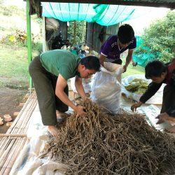 ミャンマー、SDGsビジネス調査